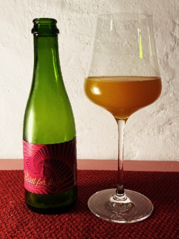 La Calavera Brett for Light - Apricot Sour aged in Wine Barrels