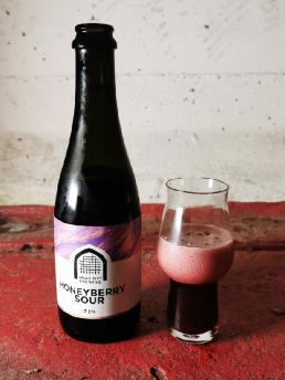 Vault City Brewing Honeyberry Sour