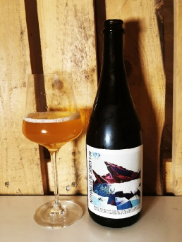 Heintz Arstisinal Ales Nothing to be sorry for - Motueka DH Farmhouse Ale Red Wine Barrel Aged