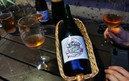 Antidoot L'Ambigu Pinotin titel