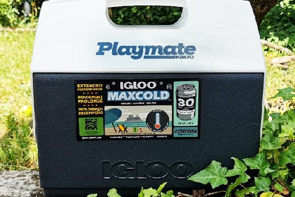 Igloo Playmate Elite Maxcold