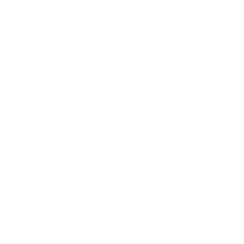 International Beer Sommelier