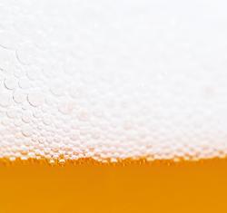 biermuda logo