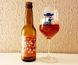 Mikkeller Flemish Primitve Raspberry titel