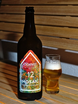 Zichovec mosaic 12