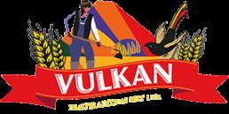 vulkan_logo_